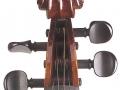 Matteo Goffriller Cello Srcoll Front