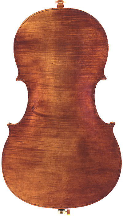 Matteo Goffriller Cello Back